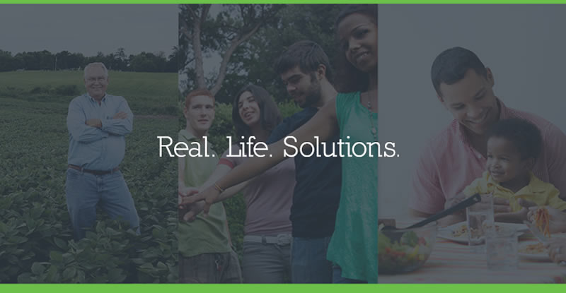 Real life solutions photo collage